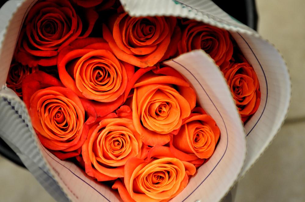 Mood Moss, Orange Roses - Epicuria Catering, Ottawa